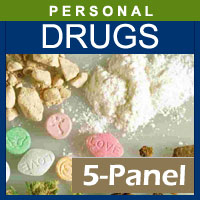 Alcohol and Drug Testing Services 5 Panel Hair Drug Testing for 1 segment - Personal Purposes